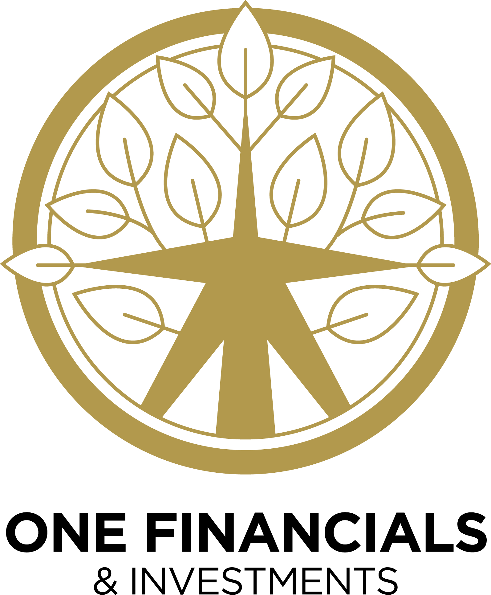 One Financials & Investment